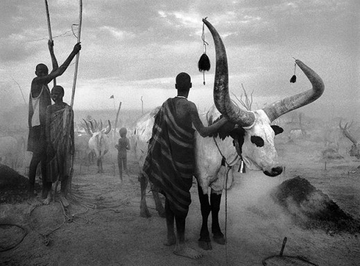 genesis sebastião salgado 10 A Dinka group at Pagarau cattle camp, Southern Sudan, 2006
